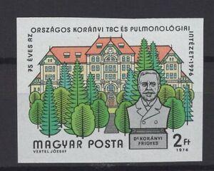 HUNGARY, MAGYAR, STAMPS, 1976, Mi. 3156 B **