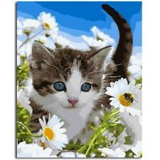 """Paint By Number Kit Cat Daisy Meadow Animals DIY Wall Art Picture 16x20"""" Canvas"""
