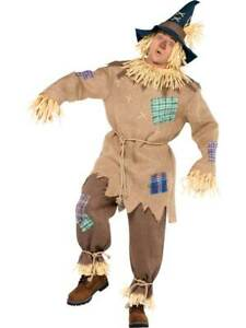 Adult Mens  Mr Scarecrow Book Week Wizard Of Oz Fairytale Fancy Dress Costume