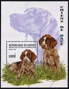GUINEA 1996 DOGS S/S DOMESTIC ANIMALS A8
