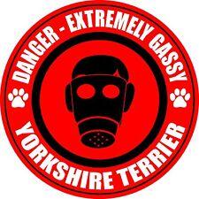 Danger Gassy Yorkshire Terrier Dog Fart Sticker