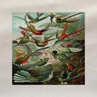 Tropical Pájaros Panel De Tela Hacer Cojín Tapicería Manualidades