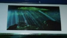 "Top Fin Underwater Cave Static Cling Aquarium Background 18 x 36"", New"