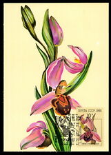 RUSSIA MK 1991 ORCHIDEEN ORCHIDEE ORCHIDS MAXIMUMKARTE MAXIMUM CARD MC CM m188
