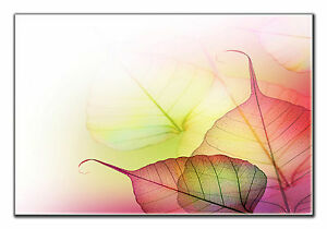 Autumn Leaf Forest Leaves Canvas Print Wall Art Framed and Ready to Hang