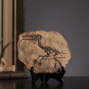 Rare Carnivorous Dinosaur Sinosauropteryx Fossil Cretaceous 140 Million Year