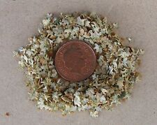 1:12 Scale 1 Gram Packet Of Dolls House Miniature Summer Leaves Garden Accessory