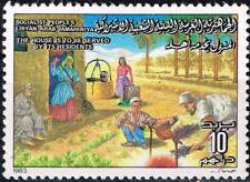 Lybia Culture Ethnicities Oazis Arab Village scene 1983 MLH