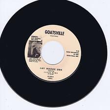JAY HODGE ORK - GOATSVILLE (Wild early 60s Rockin' Guitar INSTRUMENTAL Jiver)