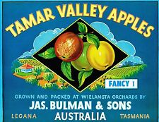 Apple Labels Tasmanian Fruit Art Vintage Australian Pear Wall Poster C set (10)