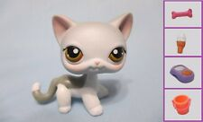 Littlest Pet Shop Cat Shorthair Siamese 138 and Free Accessory Authentic Lps