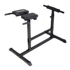 New Hyperextension Bench Roman Chair Sit Up Exercise AB Home Back Workout Gym