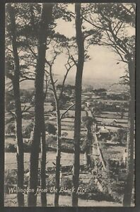 Postcard Willington nr Kelsall Cheshire view from the Black Firs posted 1919