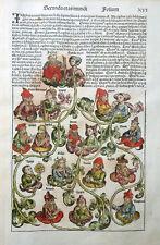 SCHEDEL WELTCHRONIK STAMMBAUM GENEALOGIE JAPHET SOHN NOAHS INKUNABEL1493