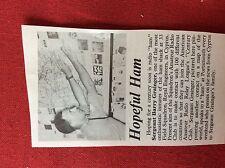 m2r ephemera  1965 picture british army sgt barry grainger cyprus radio