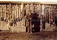 ANTIQUE HUNTING TRAPPING FURS RIFLE REPRINT 8X10 PHOTO COYOTES FOX BOBCATS # 2
