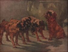 Brussels Griffon Dogs by Maud Earl, all identified, owned by Miss Hall, 1935