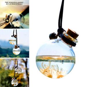 Rear View Mirror Car Ornament Pendant Air Freshener Bottle Perfume Home Hanging