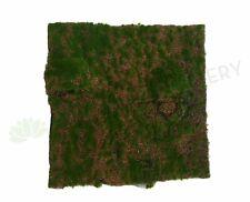 NEW Artificial Flowers/Plants ACC0059 Artificial Moss Mat / Carpet