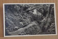 Postcard Isle of Wight Shanklin Chine Real Photo unposted