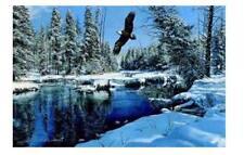 Eagle Creek by Richard Plasschaert
