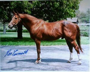 Secretariat  Photograph Signed 11x14 Color Ron Turcotte Autograph