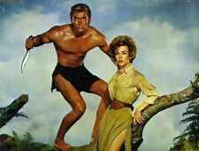 Tarzan Ape Man 1959 C 01 A3 Box Canvas Print