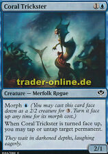 4x Coral trickster (coraux rogolo) duel ponts: speed vs. Canning Magic