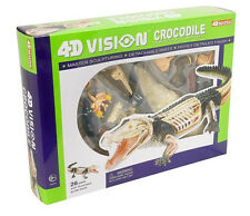 CROCODILE ANATOMY MODEL/PUZZLE, 4D Vision Kit #26114  TEDCO SCIENCE TOYS