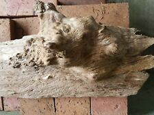 "Unfinshed 24"" long Used burled Wood Wall Art or Mounting Piece"