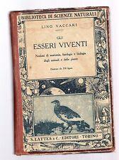 gli esseri viventi - lino vaccari - boxcasascfferr215
