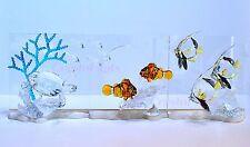 Swarovski 2005 2006 2007 SCS Harmony Eternity Community (Color) Brand New In Box