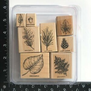 Stampin Up Fantastic Foliage Wood Rubber Stamps Set of 8 Fall Leaves Pinecone