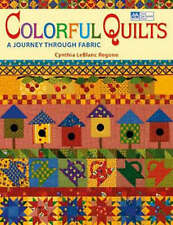 Brand New Bargain Book Colorful Quilts A Journey through Fabric LeBlanc Regone