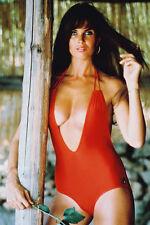 Caroline Munro Busty en Rojo Bañador 11x17 Mini Póster