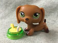 Littlest Pet Shop lot #139 Freckled Dachshund Dog w/ Accessories