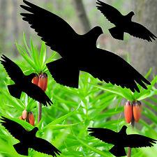 set shadow birds black die cut Window glass Protection vinyl decals stickers