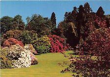 B86987 killerton exeter devon garden in early summer   uk