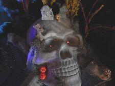 "LIGHTS 42"" Halloween SKULL Island Pirate Village Display platform base Dept 56"