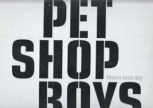 "Pet Shop Boys  12"" Vinyl  HOME AND DRY  ©  2002  EMI"