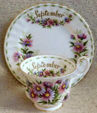 ROYAL ALBERT FLOWER OF THE MONTH MICHAELMAS DAISY CUP & SIDE PLATE - NO SAUCER