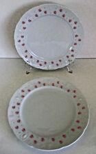 Mitterteich Rose Pattern MIT51 Dinner Plates 2 Pieces
