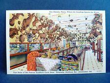 Postcard TX San Antonio East Room Buckhorn Curio Store Buckhorn Bar