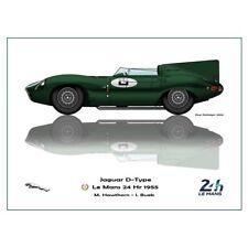 Print on paper Jaguar D-type #6 Hawthorn / Bueb Winners 24h LM 1955