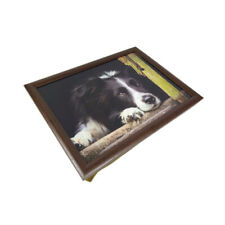 Laptray Collie Chill Out CM 42 x 32.5cm NEW
