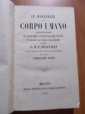 G.B.F. Descuret LE MARAVIGLIE DEL CORPO UMANO Ernesto Oliva 1857
