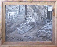 Original Charcoal Picture of  a Sheep Being Sheared