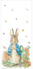 20 x Beatrix Potter Peter Rabbit Clear Cello Treat Favour Bags with Twist Ties