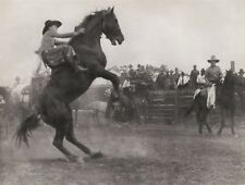 1908/52 Vintage WESTERN COWBOY HORSE Bronco Rodeo Photo Art 11x14 ERWIN E. SMITH