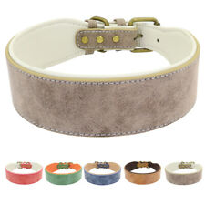 Classic Padded Leather Dog Collar Heavy Duty Large Dog Collar With Brass Buckle